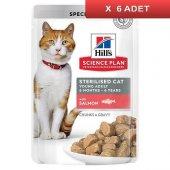 Hills Chunks İn Gravy Somonlu Kısırlaştırılmış Kedi Konservesi 85 Gr (6 ADET)