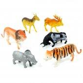 Kartela Vahşi Hayvanlar Seti