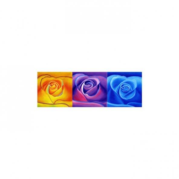 Three Roses 3 Parça Kanvas Tablo 40x120 Cm
