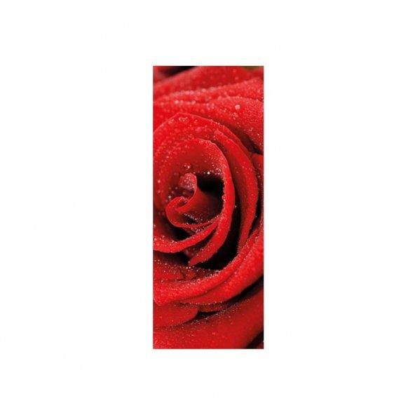 Kırmızı Gül Buzdolabı Sticker