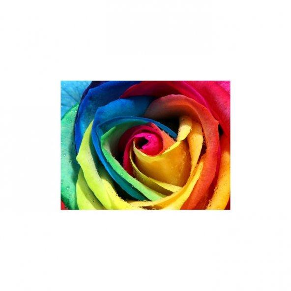 Colourful Love 3 Parça Kanvas Tablo 70X90 Cm