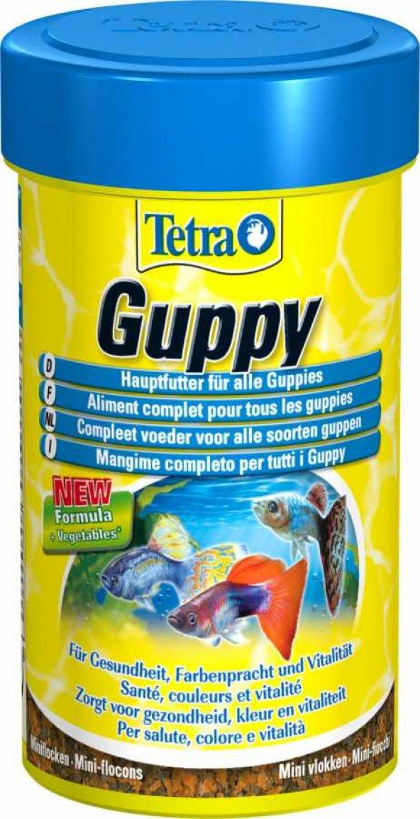 Tetra Guppy Lepistes Yemi 100 ML