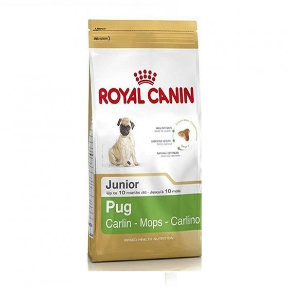 Royal Canin Junior Pug Köpek Maması 1,5kg