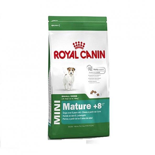 Royal Canin Mini Adult 8+ Küçük Irk Yaşlı Köpek Maması 2 Kg
