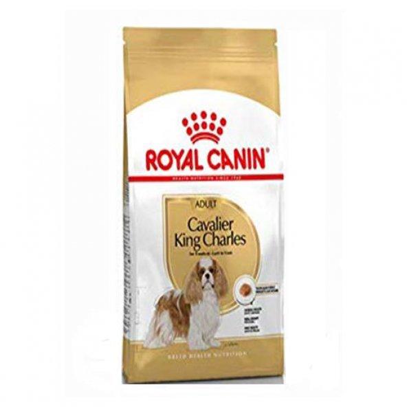 Royal Canin Cavalier King Charles Adult Köpek Maması 3 Kg