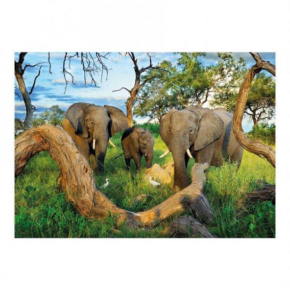 Dino Puzle 1000 Parça Botswana Filleri Puzzle