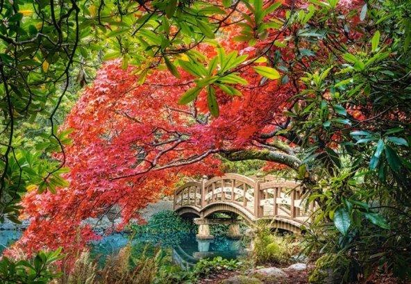 Japon Bahçesi 1000 Parçalık Castorland Puzzle