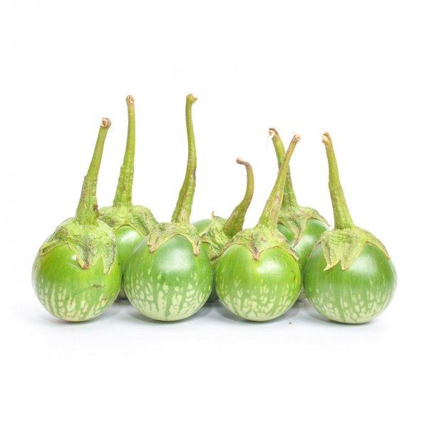 Süper Paket 100 Tohum Thailand Yeşil Dolmalık Patlıcan Tohumu