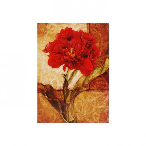 Carnation Kanvas Tablo 50X70 Cm