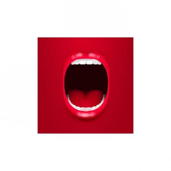 Bağırış Bulaşık Makinesi Sticker