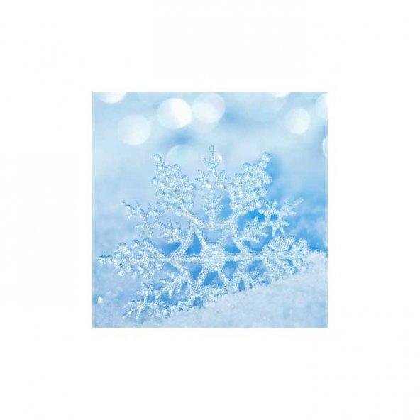 Kar Tanesi Bulaşık Makinesi Sticker
