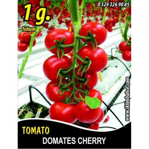 Domates Tohumu Cherry - 1 g (~ Takribi 150 Tohum)