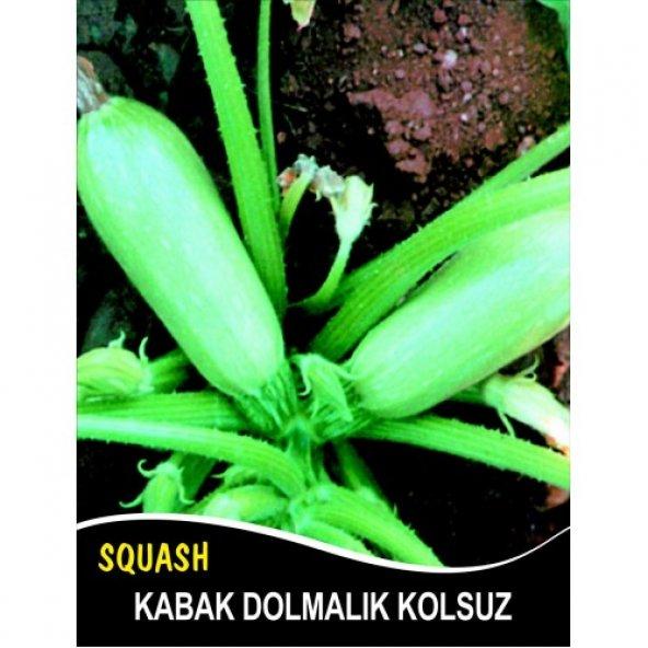 Kabak Tohumu Sakız Beyaz Dolmalık - 10 g (~ Takribi 35 Tohum)