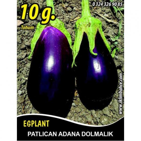 Patlıcan Tohumu Adana Dolmalık - 10 g (~ Takribi 1350 Tohum)