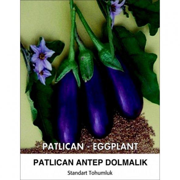 Patlıcan Tohumu Antep Dolmalık - 10 g (~ Takribi 1300 Tohum)