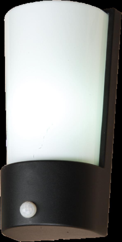Bahçe Aplik Sensorlü Jupiter JW930 AN