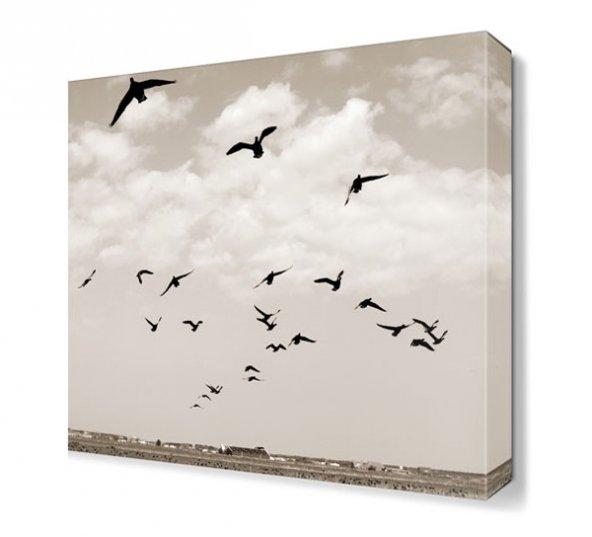 Uçan Kuşlar Tablosu