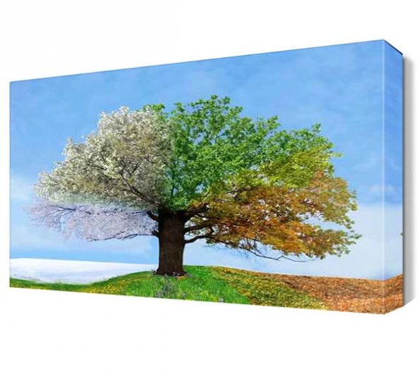 Dört Mevsim Ağacı Canvas Tablo