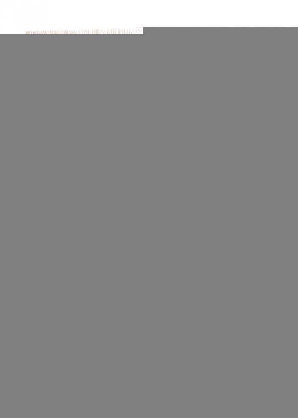 Brillife 80x150 Halı Tunç HL11834.801 (Püsküllü)