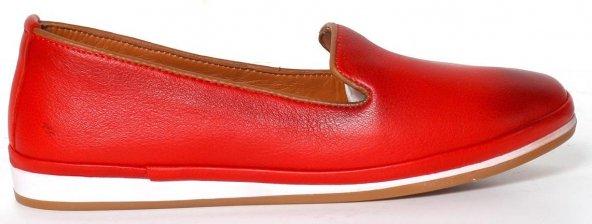 Comfort Ayakkabı Antibakteriyel (COM010KMZ)