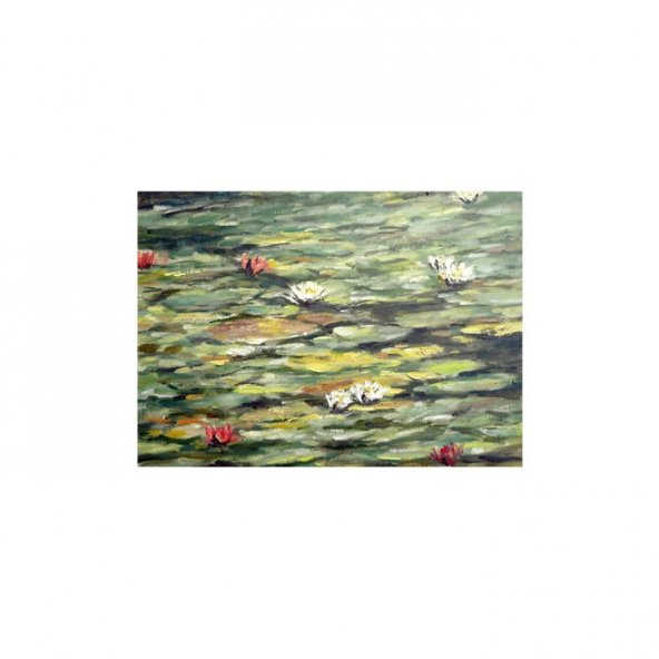 Sun Shy Kanvas Tablo 50X70 Cm
