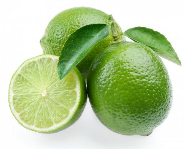 Dikensiz MEXİCAN LİME Limon Fidanı NADİR ÇEŞİT 5 YAŞLI TÜPLÜ