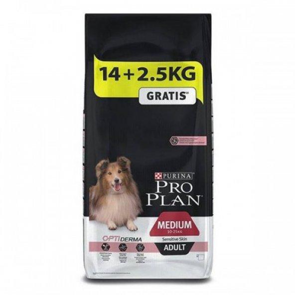 Proplan Somonlu Sensitive Yetişkin Köpek Maması 16,5 Kg