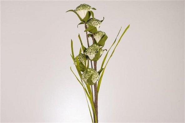 Beyaz Yeşil 6lı Çiçek
