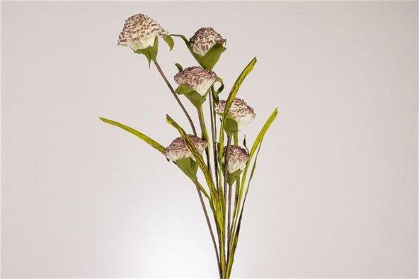 Beyaz Mor 6lı Çiçek