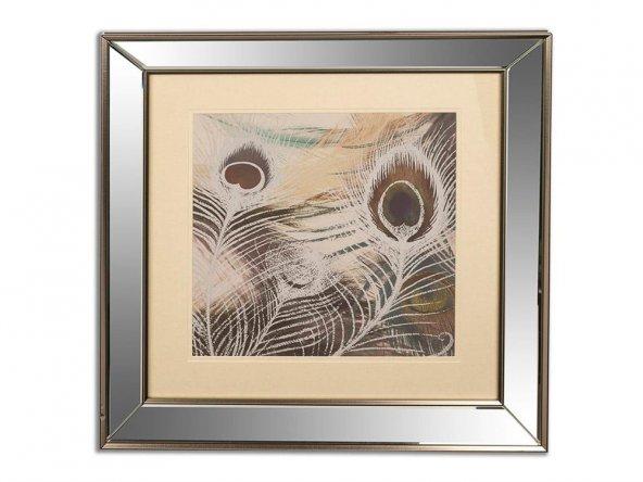 Tavus Kuşu Tüyü Gmş Aynalı Pano 49cm