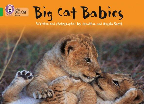 Big Cat Babies (Big Cat-5 Green)