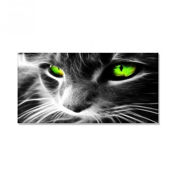 Yeşil Gözlü Kedi  Kanvas Tablosu 80 cm x 160 cm