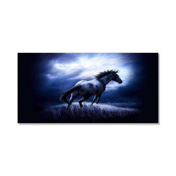 Siyah At  Kanvas Tablosu 50 cm x 100 cm