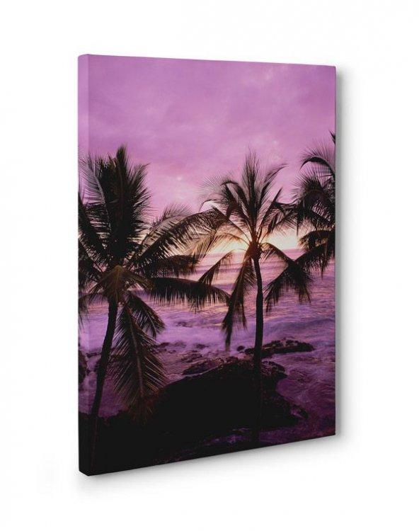 Palmiye Ağacı Deniz Tablosu 60 cm x 120 cm
