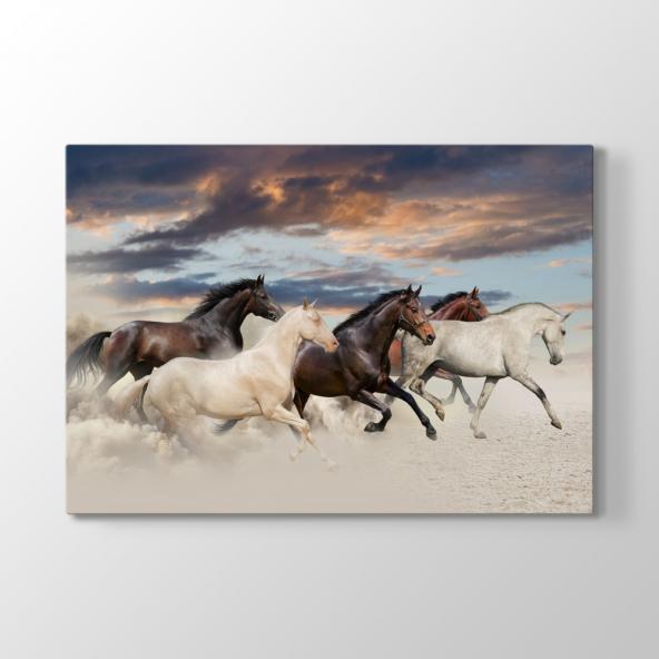 Atlar Tablosu 80x100 cm