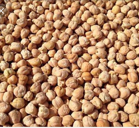 Özel üretim Hınıs nohut 1000 gram