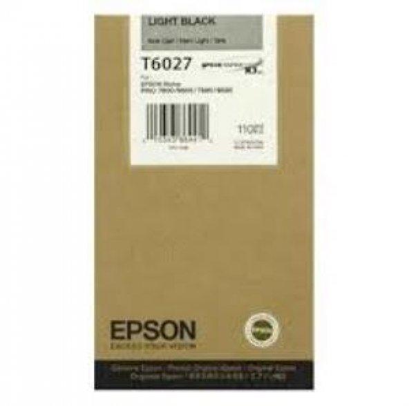 EPSON UltraChrome K3 Light-Black (110ml). C13T602700