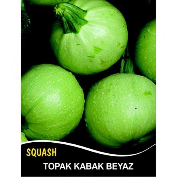 Kabak Tohumu Topak(bomba) Beyaz - 25 g (~ Takribi 90 Tohum)