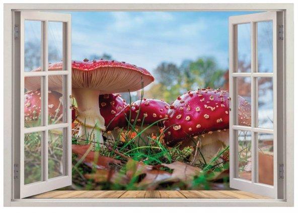 Pencere, Mantar Duvar Sticker