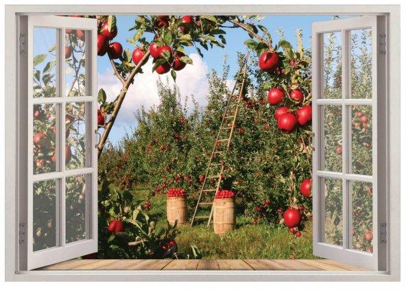 Pencere, Elma Bahçesi Duvar Sticker