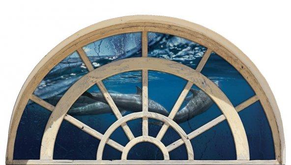 Pencere, Yunus, Deniz Duvar Sticker