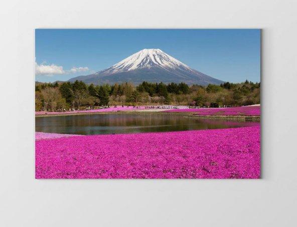 Fuji Dağı Manzarası Tablosu