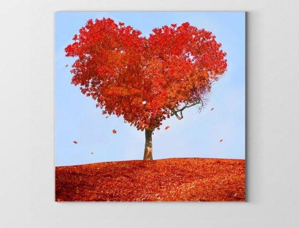 Kalp Ağacı Tablosu