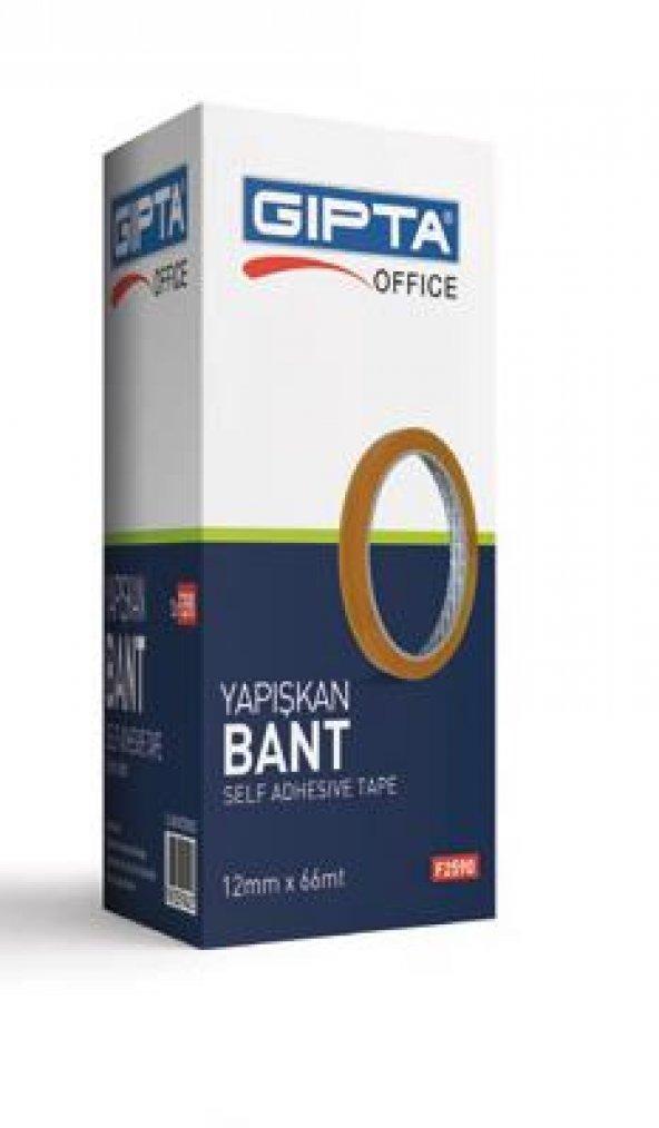 GIPTA BANT 12*66 MM