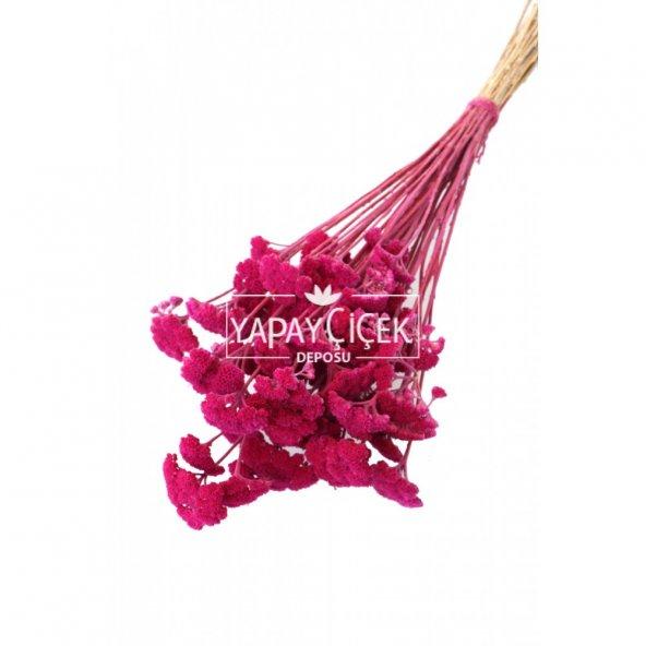 Kuru Çiçek Şemsiye Otu Demeti Pastel Pembe(Özel Kesim)