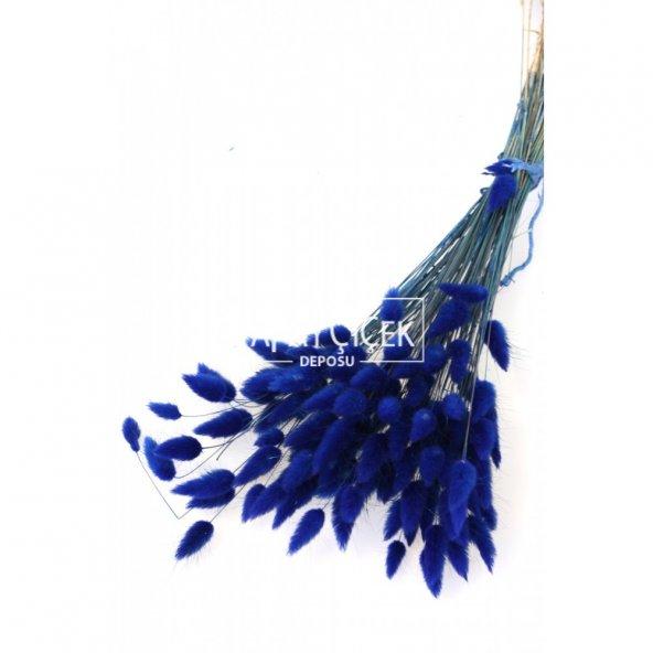 Kuru Çiçek Pamuk Otu (Yerli) Lacivert