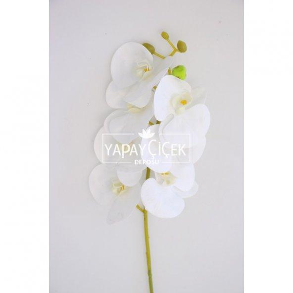 Kibar Islak Orkide Çiçeği 66 cm Beyaz