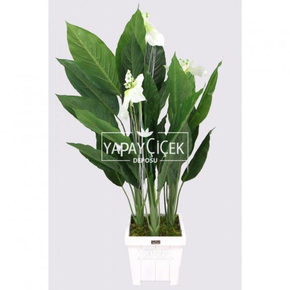 Yapay Ağaç 3 Gövdeli Spatifilyum Barış Çiçeği (Spathiphyllum) 125 cm