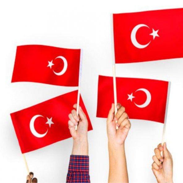 Türk Bayrağı Sopalı Bayrak 30x45cm 50 adet