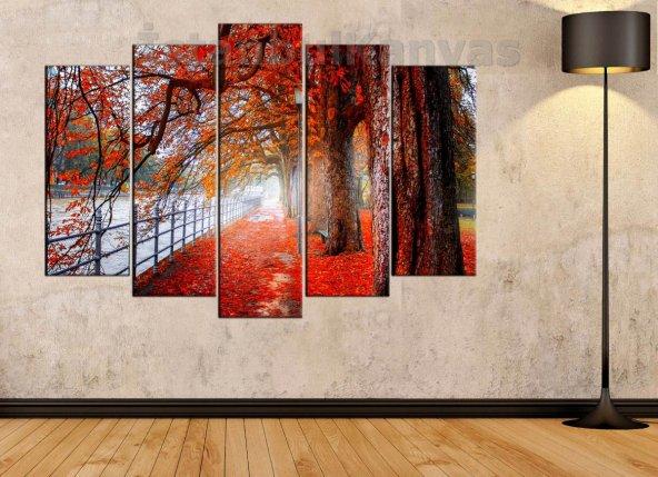 Sonbahar, Yaprak Döken Ağaçlar ve Kırmızı Yapraklar